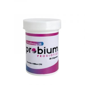 Probioticos Wildberry 6B Niños 30 Cápsulas Probium